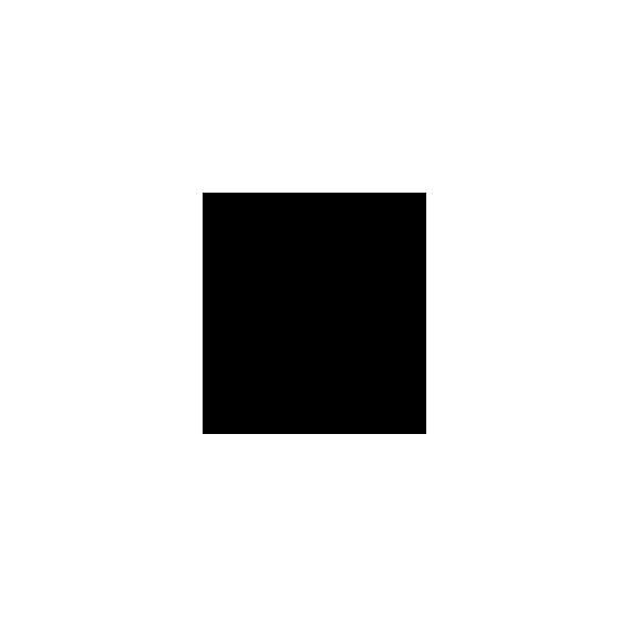 Vergrootglas pictogram