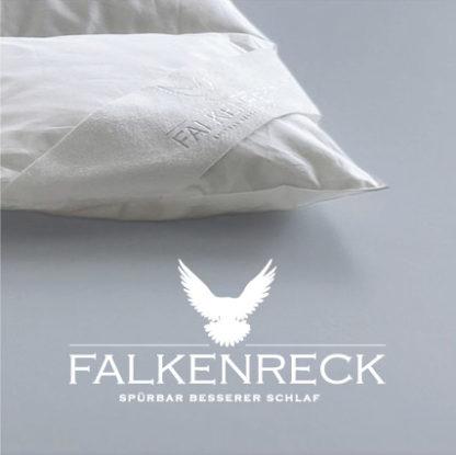 Logo Falkenreck