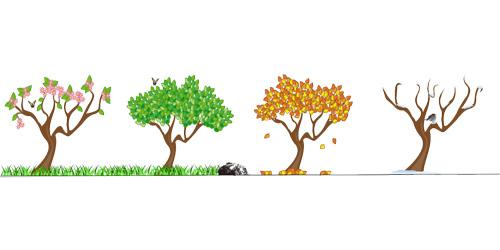 4-Seizoenen afgebeeld door bomen