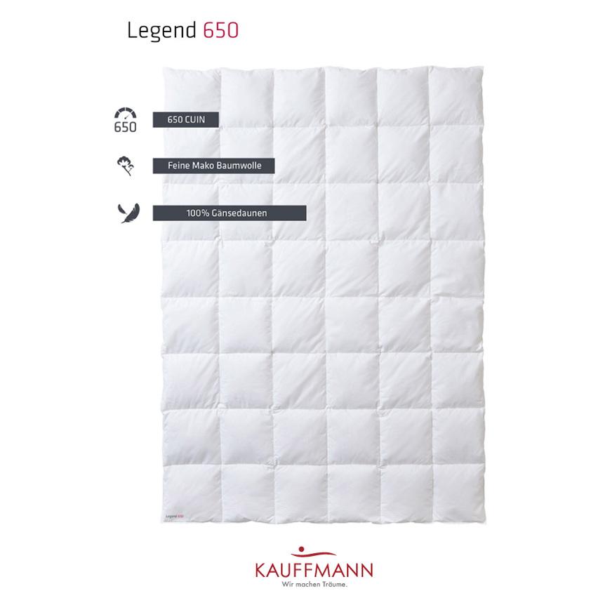 Een afbeelding van de Kauffmann Legend 650